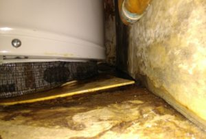 Preventative Water Heater Replacement Damage Photos
